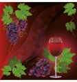 Wine glass and black grape background vector image vector image
