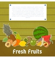 Fresh fruits banner vector image