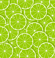 Lime slices vector image