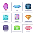 Jewelry gems cuts infographics vector image vector image