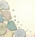 Hand drawing seashell background vector image