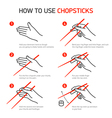 How to use chopsticks guidance vector image