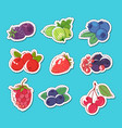 fresh and juicy berries isolated labels vector image