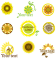 stylized sunflowers vector image