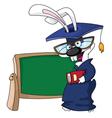 graduation rabbit vector image