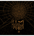 halloween background spider web vector image