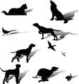 Hunting dog vector image
