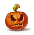 Pumpkins Angry 2 vector image