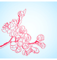 background with red sakura flowers vector image
