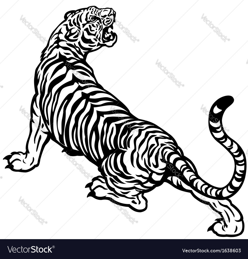 Angry tiger black white vector