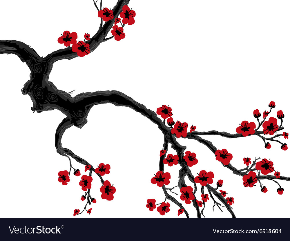 Sakura evening in the garden blooming cherry vector