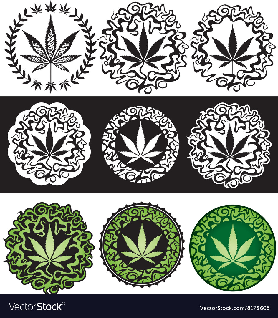 Cannabis marijuana leaf texture background vector
