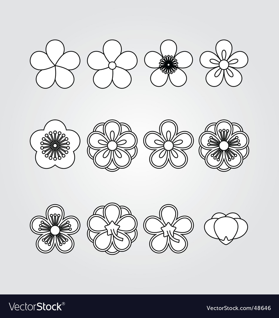 Flower kit set vector