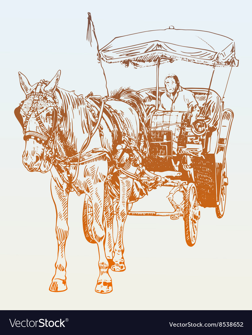 Sketch drawing of horse driver vector