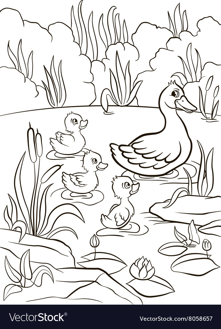 Kind duck and free little cute ducklings swim on t vector
