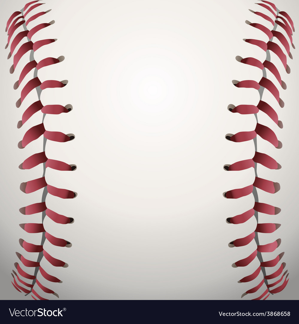 Baseball closeup vector