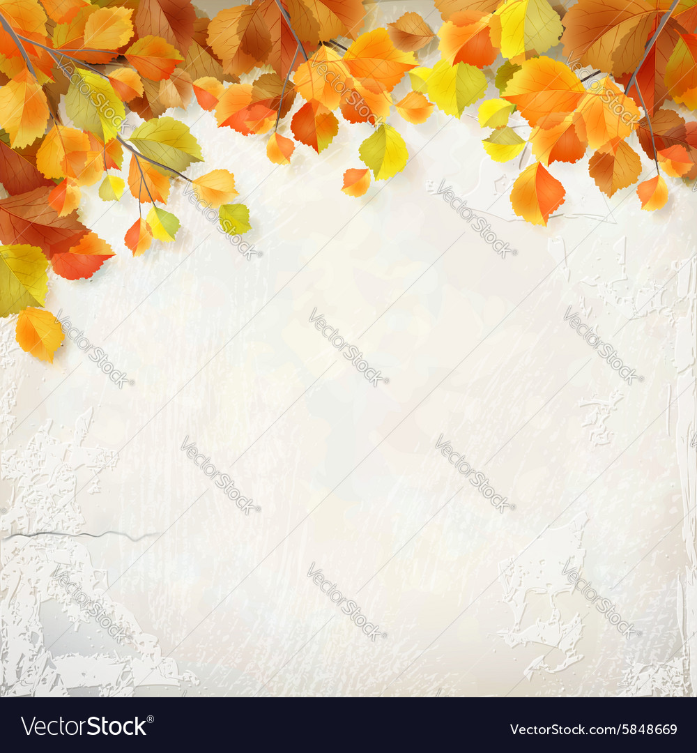 Autumn leaves plaster wall background vector