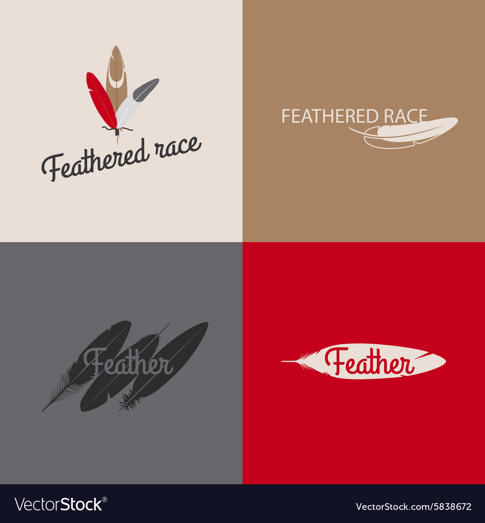 Feather logo templates vector