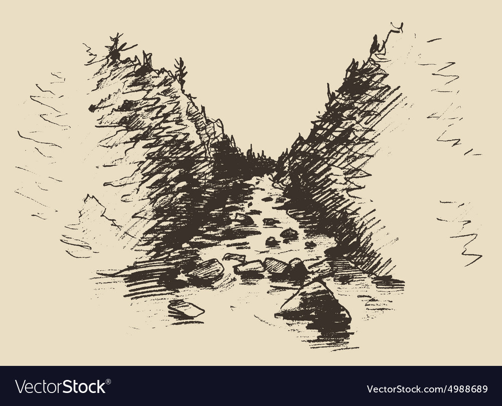 Hand drawn landscape with river and fir forest vector