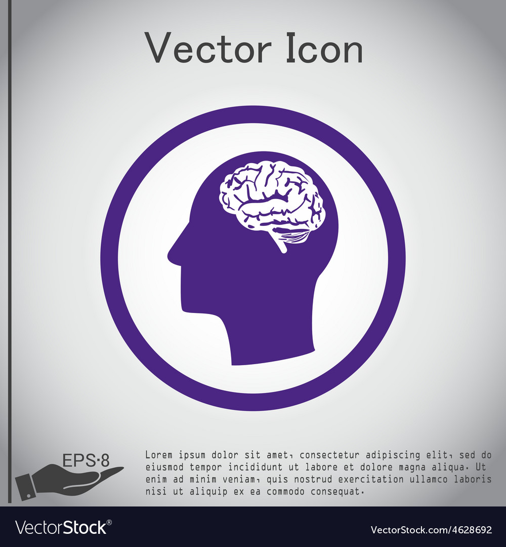 Icon head think silhoutte man and his mind about b vector