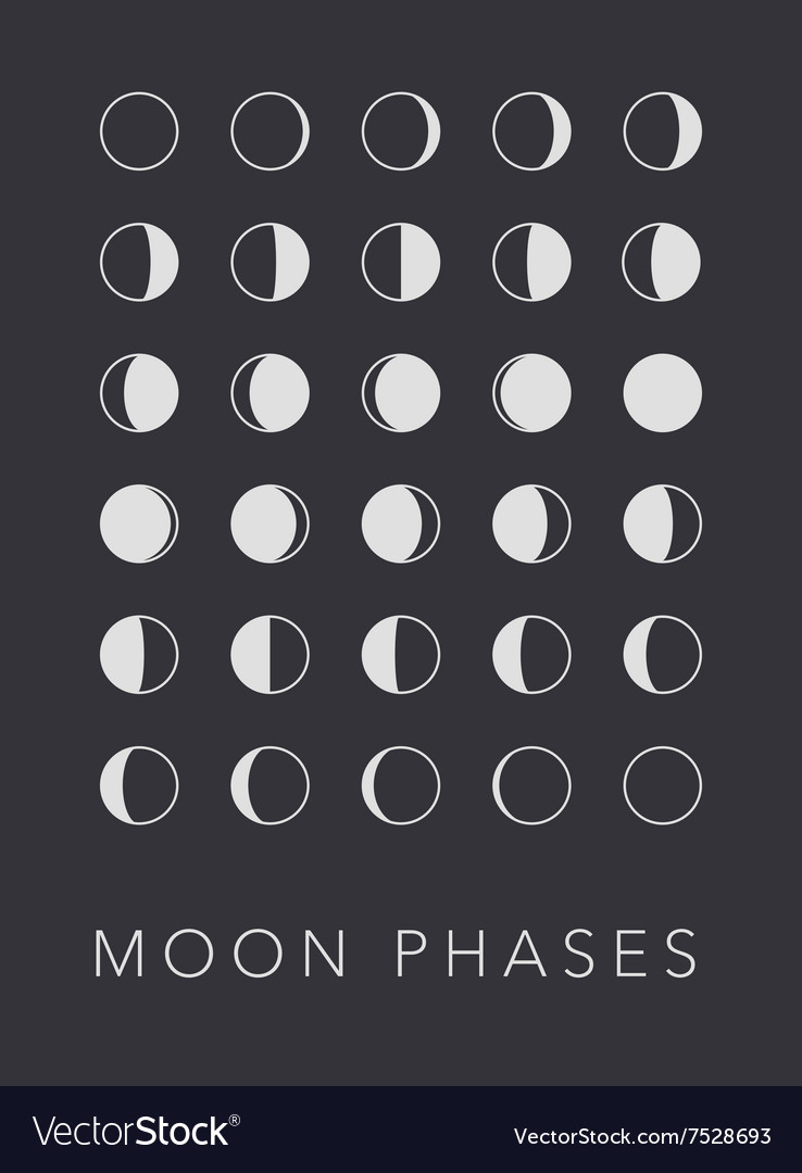 Full cycle moon phases background vector