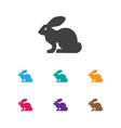 of zoo symbol on rabbit icon vector image
