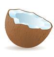 coconut 02 vector image