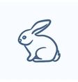 Rabbit sketch icon vector image