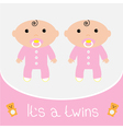 Baby shower card Its a twins girls vector image