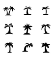 black palm icon set vector image