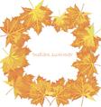 Design template autumn maple leaves vector image