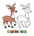 Coloring book of lttle funny young deer or fawn vector image