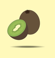 Kiwi Fruit Icon vector image
