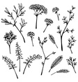 Set og grass silhouettes isolated on white vector image
