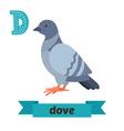 Dove D letter Cute children animal alphabet in  vector image