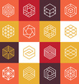 linear hexagon logos and design elements vector image