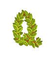letter q english alphabet made of tree branches vector image