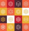 linear hexagon logos and design elements vector image
