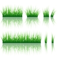 Reflected grass pattern vector image
