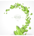 Abstract background with green leaves vector image