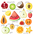 half of a fruits vector image