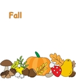 Background with Fall leaves fruits and Mushrooms vector image