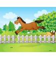 A jumping horse vector image vector image