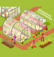 colored greenhouse composition vector image