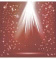 Red Rays of Magic Lights vector image vector image
