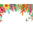 frame from tropical and flowers vector image vector image