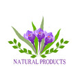 natural organic food bio eco labels and shapes vector image