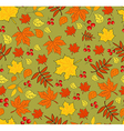 Pattern with autumn leaves on green background vector image