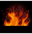 burning fire on a black vector image