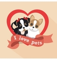 label i love pets female male doggy heart vector image